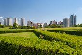 Cityscape Of Curitiba, Brazil
