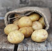 Sack Fresh Organic Potatoes