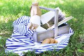 Tasty snack in basket on grassy background for spending nice weekend in a park