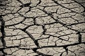 foto of northeast  - Land cracked when dry season at northeast of Thailand - JPG
