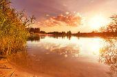 Green summer lake