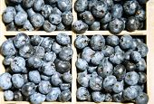 Tasty ripe blueberries in wooden crate, close up