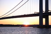 The littele sheep undeThe Verrazano-Narrows Bridge , The largest and longest bridge in New York City