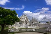 Wat Rong Khun And Tree.