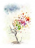 Watercolor Digital Painting Of Colorful Autumn Tree