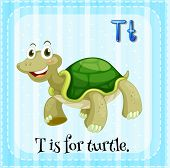 Illustration of a letter T is for turtle