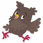 Trowbled running owl