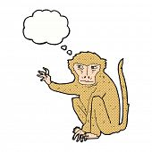 cartoon evil monkey with thought bubble