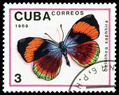 Vintage  Postage Stamp. Butterfly  Callithea Saphhira.