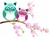 Two Owls On Twig Of Tree