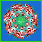 Decorative mandala with a fishes