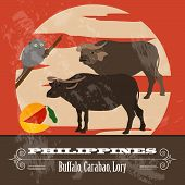stock photo of carabao  - Philippines - JPG
