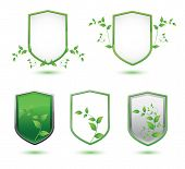 insulated shield banner with green leaves on a white background