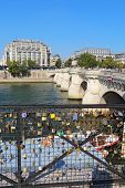 Love Locks Near The Pont Neuf In Paris, France Vertical