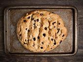 Rustic Italian Olive Bread
