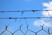 Barbed Wire Against The Open Sky