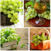 Set different white green grapes on a wooden table