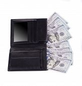 wallet with american dollars