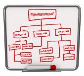 Organizaitonal Chart - Dry Erase Board