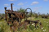 Old tireless tractor in weeds