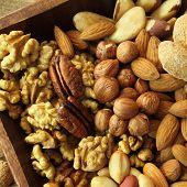 pic of pecan nut  - Varieties of nuts - JPG