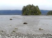 Raccoon Island Mud Flats