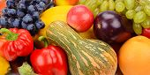 pic of brinjal  - A bright background of fruits and vegetables - JPG