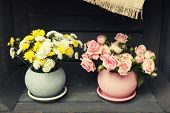 stock photo of wooden crate  - Beautiful flowers in pots in wooden crate - JPG