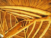 picture of bottom  - Yellow roof is made of cane  - JPG