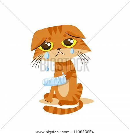 poster of Sad Crying Cat. Cartoon Vector Illustration. Crying Cat Meme. Cat Face. Cat Picture. Crying Cat Emoticon. Cat Tears. Cat Wants To Come In. Cat At Night. The Poor Cat. Weeping Cat. Splinting Leg.