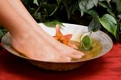 Woman's pedicured feet in a bowl of water