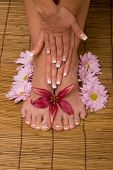 Woman's hands and feet with flowers