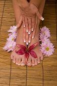 De mujer manos y pies con flores