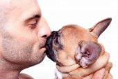 Beautiful little french bulldog puppy with a male model