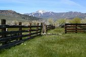 Taken in the Sierras - a rustic, old, abandoned farm and pasture. Rich with old wood fence and overg