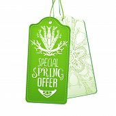 Постер, плакат: Special Spring Offer tags set