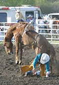 pic of bareback  - A bareback rider is tossed to the ground by his horse - JPG