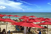 Red Resort Umbrellas