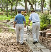 Father and son strolling through the garden together.  The father is in a walker.