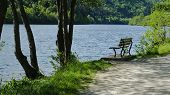 Empty Bench On The Lake