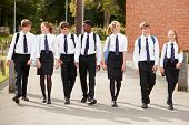 Group Of Teenage Students In Uniform Outside School Buildings poster