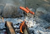 Cooking Hot Dogs Over the Camp Fire