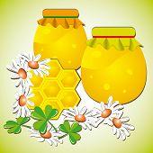 Honeycombs In Flowers