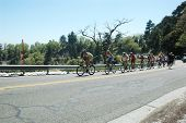 RUNNING SPRINGS, CA - MAY 21: Cyclists, climbing Hwy 18 on Stage 6 of the Amgen Tour of California o