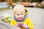 Little Boy Having Lunch After Shopping On Traditional Farmer Agricultural Market At Autumn. Child Ea poster