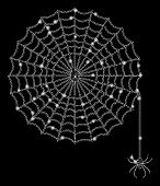Glowing Mesh Spider Net With Lightspot Effect. Abstract Illuminated Model Of Spider Net Icon. Shiny  poster