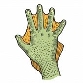 Hand Of Fabulous Man Amphibians Color Sketch Engraving Vector Illustration. Tee Shirt Apparel Print  poster