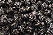 Fresh Black Berry Background. Texture Black Berry Berries Close-up. Ripe Berry Background. Fresh Bla poster