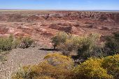 Painted Desert With Scrub In The Foreground - Arizona.