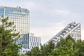 High-rise Office Building Among Evergreen Coniferous Pine Forest In The Park. Apartments With Pentho poster